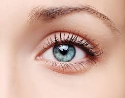Oftalmax - kapi za oči - sastojci - sastav - gel