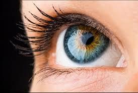 Invisio - bolji vid - tablete - ebay - ljekarna