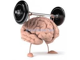 Neurocyclin - pro lepší paměť – gdje kupiti – recenzije – krema