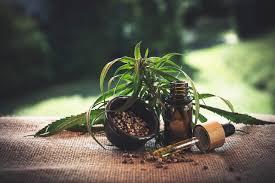 Cannabis Oil - bolje raspoloženje – instrukcije – ebay – sastav