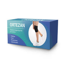 Ortezan
