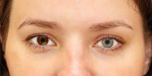 Oculax – bolji vid - gdje kupiti – recenzije – krema